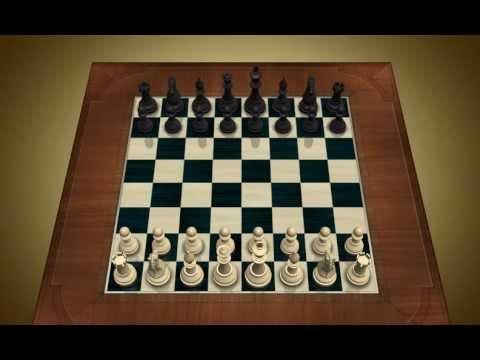 Videos de ajedrez